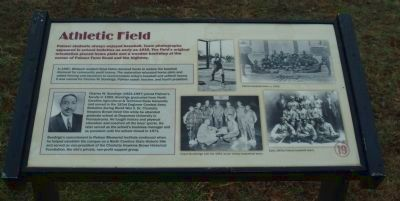 Athletic Field Marker image. Click for full size.