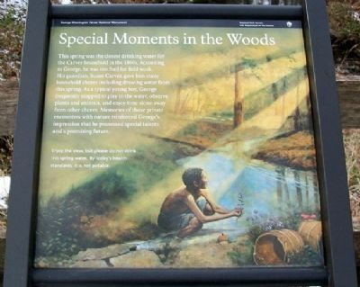 Special Moments in the Woods Marker image. Click for full size.