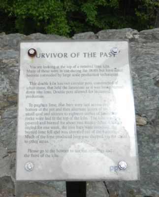 Survivor of the Past Marker image. Click for full size.