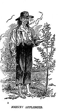 Johnny Appleseed Sketch image. Click for full size.