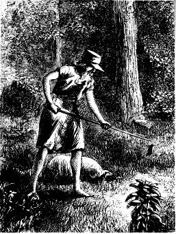 Johnny Appleseed image. Click for full size.