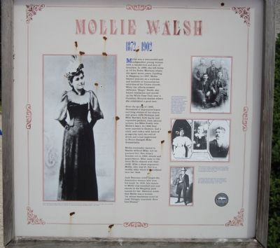 Mollie Walsh Marker image. Click for full size.