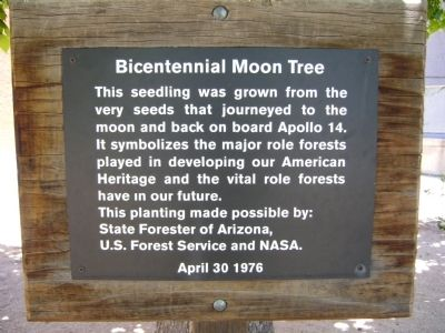 Bicentennial Moon Tree Marker image. Click for full size.