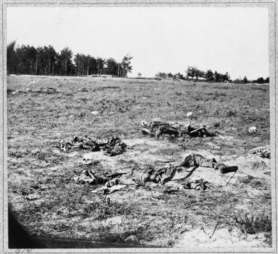 Battlefield of Gaines Mill, Va. image. Click for full size.