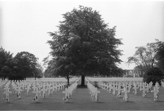 Section of the Henri-Chapelle American Cemetery near Henri-Chapelle, Belgium image. Click for full size.