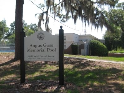 Angus Goss Memorial Pool image. Click for full size.
