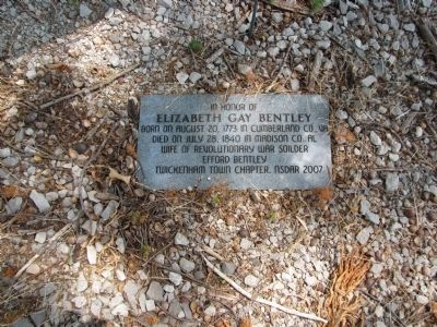 In honor of Elizabeth Gay Bentley image. Click for full size.
