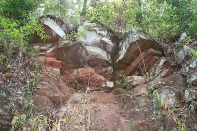 Iron ore outcrop along Red Mountain. image. Click for full size.