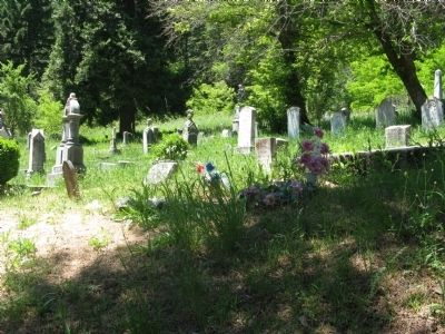 Downieville Cemetery image. Click for full size.