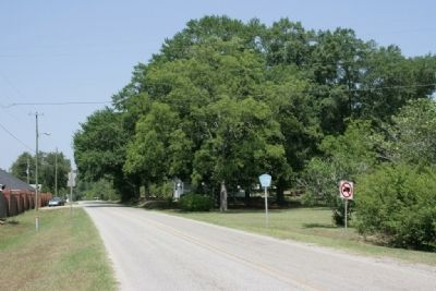 Odens Mill Road, right side of the road was the site of the Hodges home. image. Click for full size.