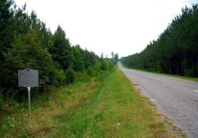 Steen Family Cemetery Marker<br>Looking East Along El Bethel Road image. Click for full size.