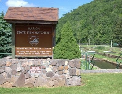 Marion Fish Hatchery image. Click for full size.