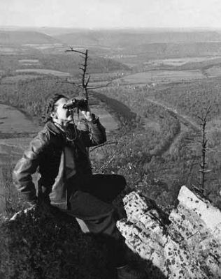 Rachel Carson, in the Hawk Mountain Sanctuary, Lehigh County, PA image. Click for full size.