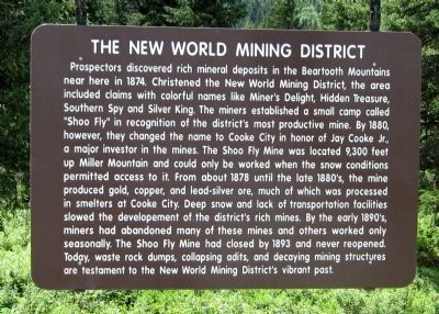 The New World Mining District Marker image. Click for full size.