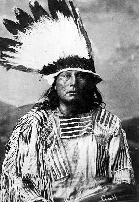Chief Gall image. Click for full size.