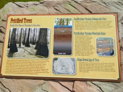 Petrified Trees Marker image. Click for full size.