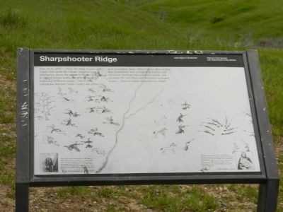 Sharpshooter Ridge Marker image. Click for full size.