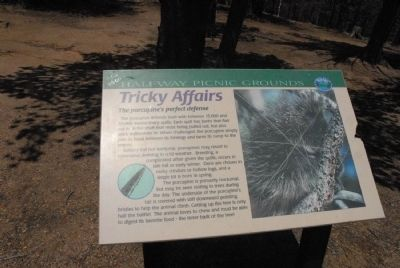 Tricky Affairs Marker image. Click for full size.