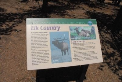 Elk Country Marker image. Click for full size.