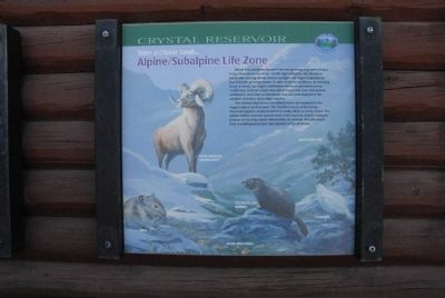Take a Closer Look...Alpine/Subalpine Life Zone Marker image. Click for full size.