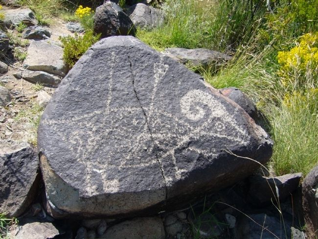 Three Rivers Petroglyph image. Click for full size.