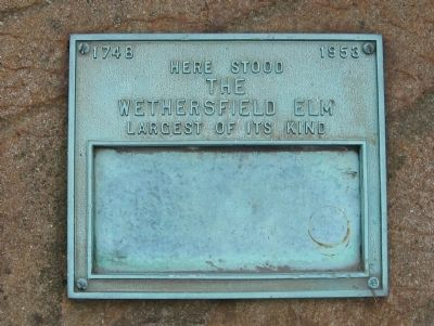 Wethersfield Elm Marker image. Click for full size.