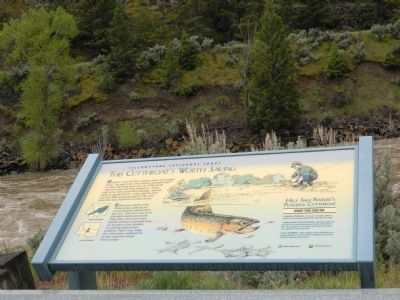 Yellowstone Cutthroat Trout Marker image. Click for full size.