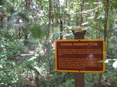 Florida Hammock Trail Marker image. Click for full size.