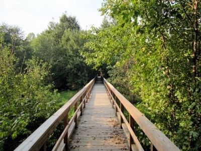 Totopotomoy Creek Trail Bridge image. Click for full size.