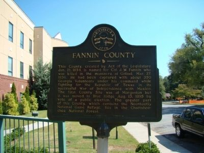 Fannin Couty Marker image. Click for full size.