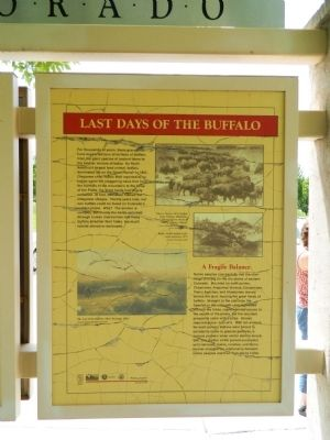Last Days of the Buffalo Marker image. Click for full size.