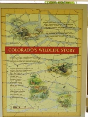 Colorado's Wildlife Story Marker image. Click for full size.