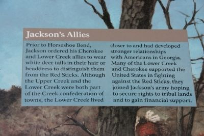 Jackson's Allies image. Click for full size.