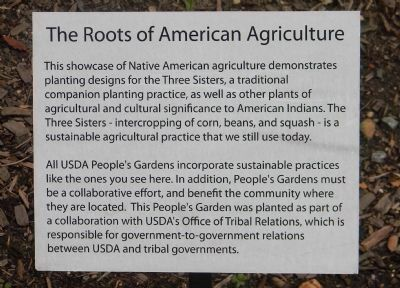 The Roots of American Agriculture image. Click for full size.