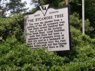 The Sycamore Tree Marker image. Click for full size.