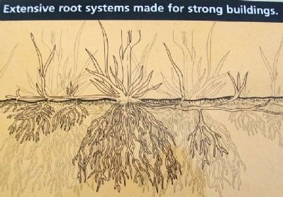 Deep Roots in the Earth Marker Detail image. Click for full size.