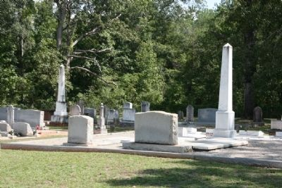 Puryearville Cemetery image. Click for full size.