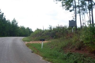 Old Simkins Cemetery Marker, looking south along Center Spring Road image. Click for full size.