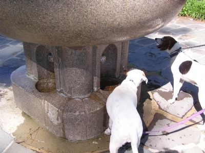 View of the dog watering fountains image. Click for full size.