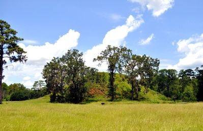 Kolomoki Mound A, also called the Temple Mound image. Click for full size.
