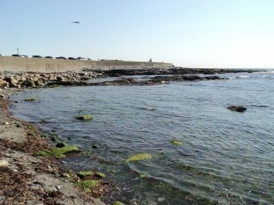 The Rocky Shore of Rhode Island image. Click for full size.