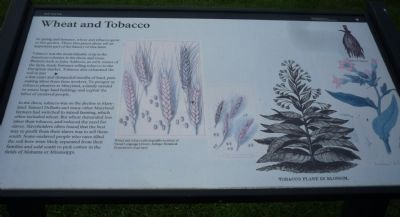 Wheat and Tobacco Marker image. Click for full size.