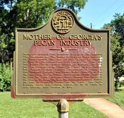 Mother of Georgia's Pecan Industry Marker image. Click for full size.