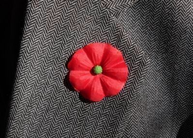 A VFW Buddy Poppy image. Click for more information.