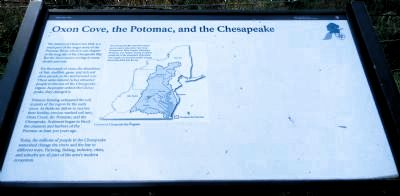 Oxon Cove, the Potomac, and the Chesapeake Marker image. Click for full size.