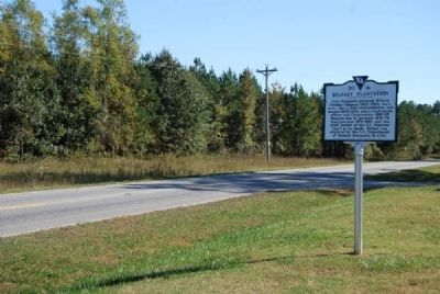 Belfast Plantation Marker<br>Reverse, Looking South Along SC 56 image. Click for full size.