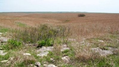 Tallgrass Prairie NP in the Flint Hills image. Click for full size.