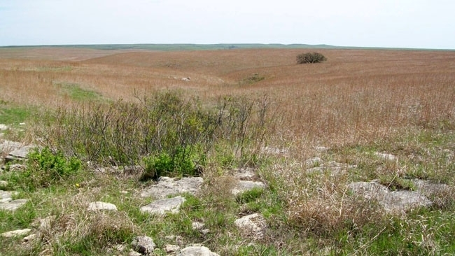 Tallgrass Prairie NP in the Flint Hills