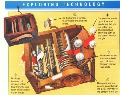 The Cotton Gin, invented by Eli Whitney image. Click for full size.
