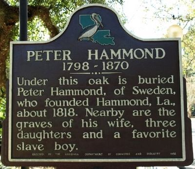 Peter Hammond Marker image. Click for full size.